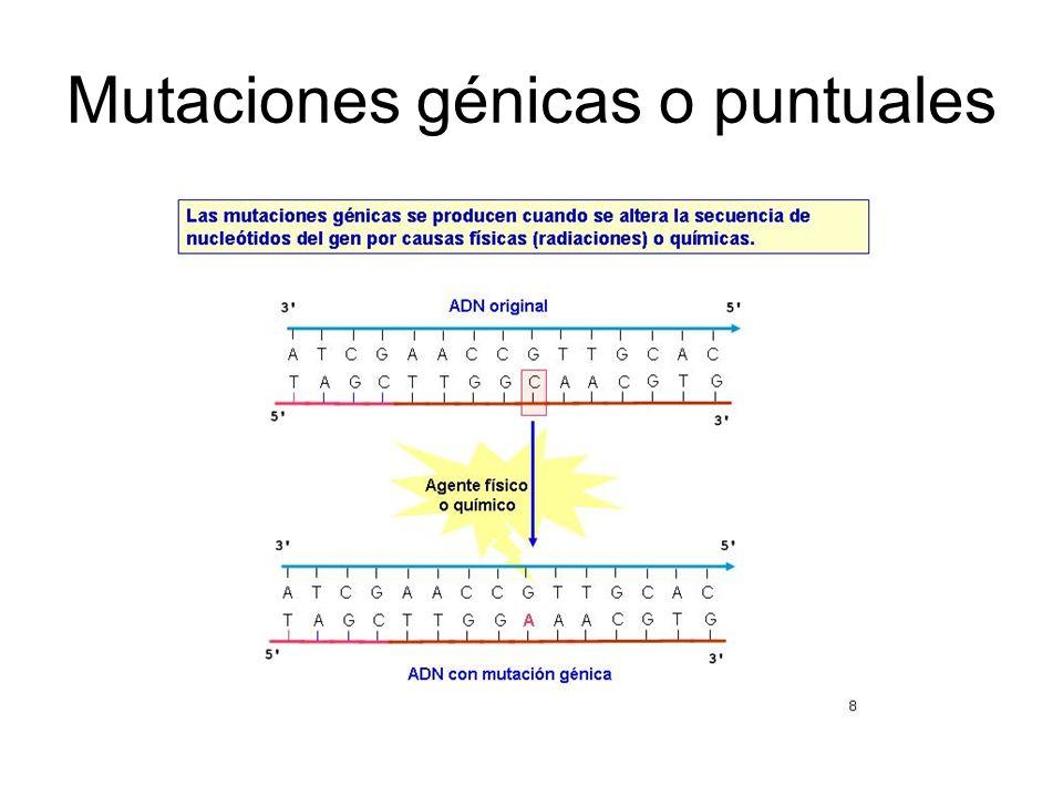 Mutaciones génicas o puntuales