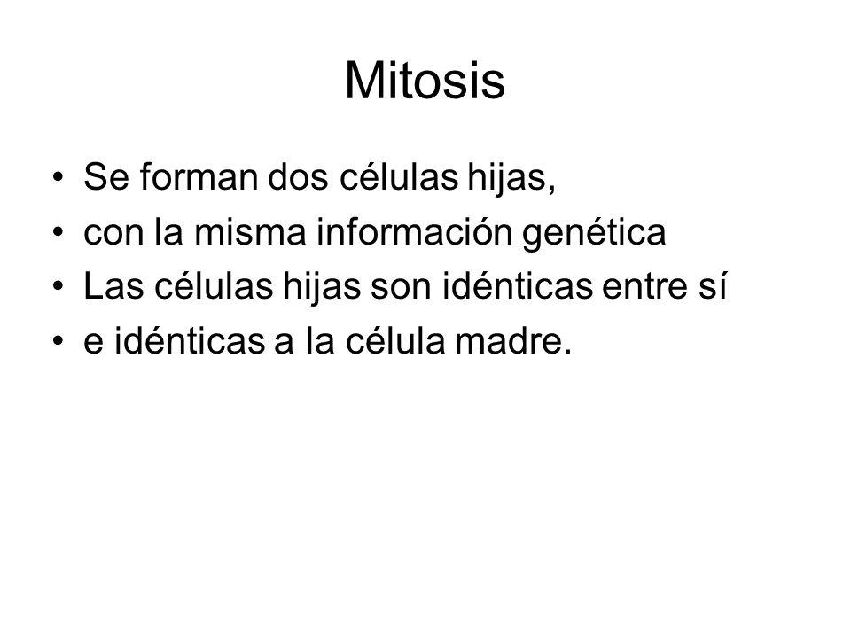 Meiosis y reproducción sexual La reproducción sexual requiere la presencia de dos células especializadas: gametos.