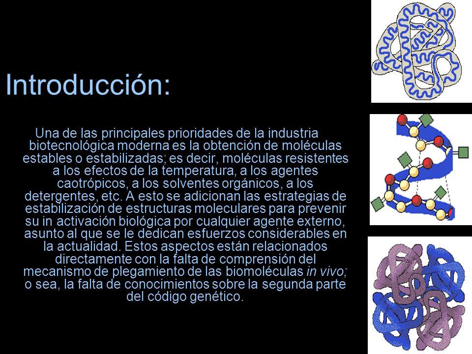 Introducción: Una de las principales prioridades de la industria biotecnológica moderna es la obtención de moléculas estables o estabilizadas; es deci