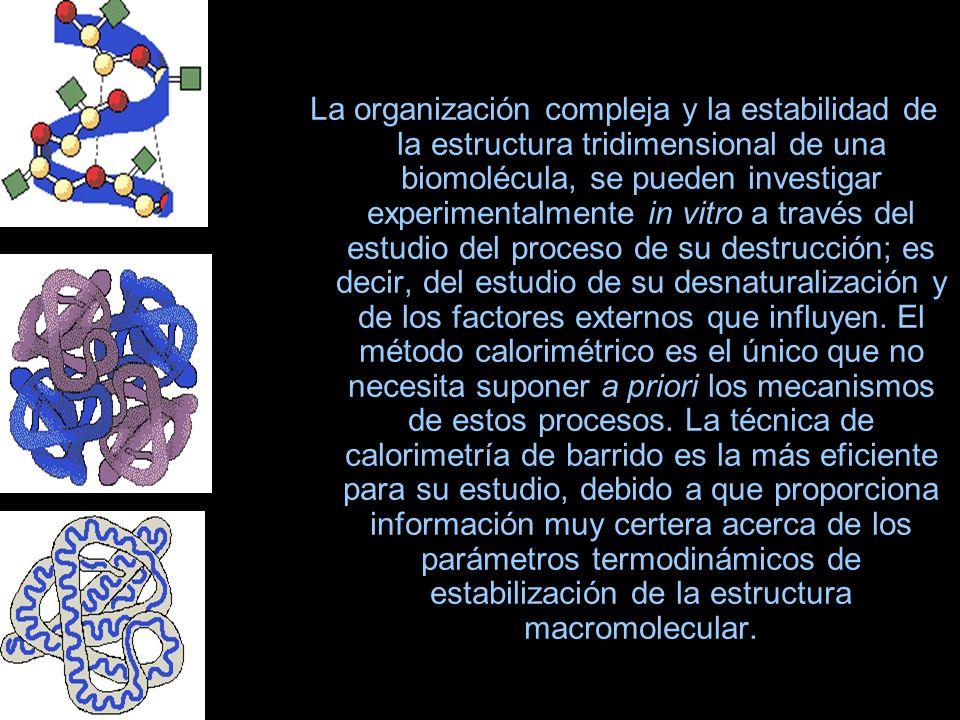 La organización compleja y la estabilidad de la estructura tridimensional de una biomolécula, se pueden investigar experimentalmente in vitro a través