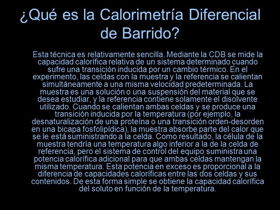 ¿Qué es la Calorimetría Diferencial de Barrido? Esta técnica es relativamente sencilla. Mediante la CDB se mide la capacidad calorífica relativa de un