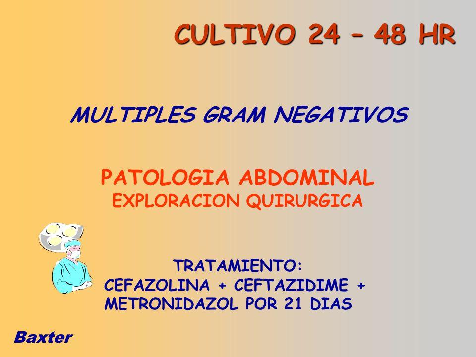 Baxter MULTIPLES GRAM NEGATIVOS PATOLOGIA ABDOMINAL EXPLORACION QUIRURGICA TRATAMIENTO: CEFAZOLINA + CEFTAZIDIME + METRONIDAZOL POR 21 DIAS CULTIVO 24