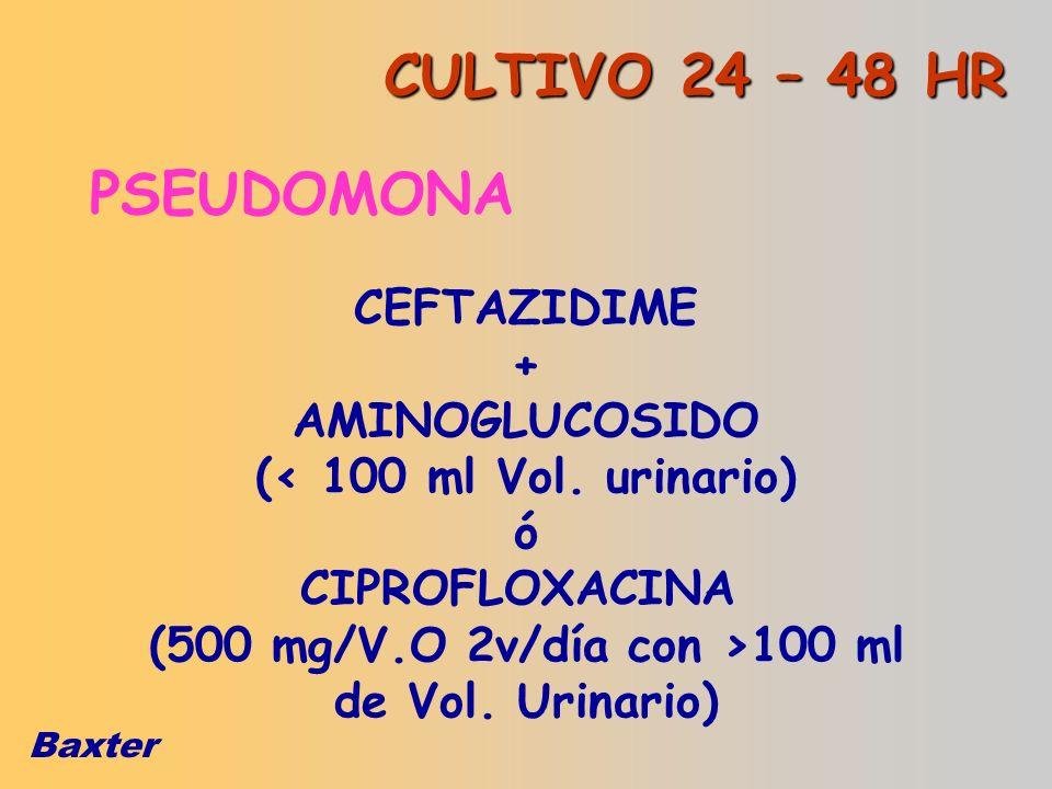 Baxter PSEUDOMONA CEFTAZIDIME + AMINOGLUCOSIDO (< 100 ml Vol. urinario) ó CIPROFLOXACINA (500 mg/V.O 2v/día con >100 ml de Vol. Urinario) CULTIVO 24 –