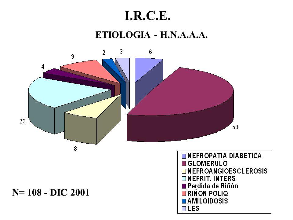 I.R.C.E. - SLANH 2001