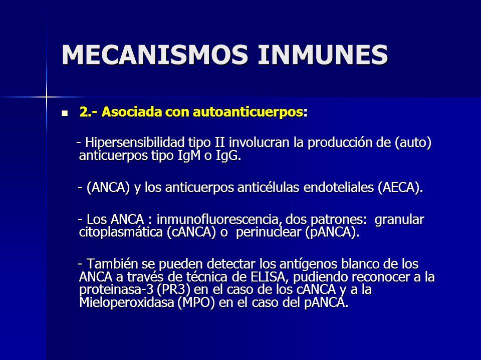 MECANISMOS INMUNES 2.- Asociada con autoanticuerpos: 2.- Asociada con autoanticuerpos: - Hipersensibilidad tipo II involucran la producción de (auto)