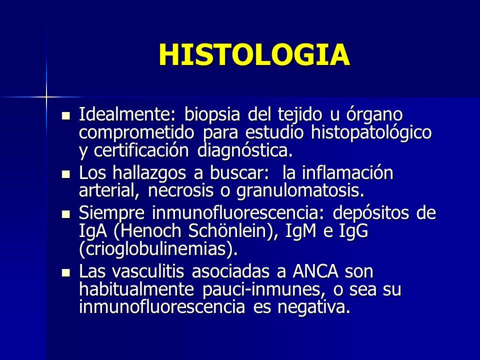 HISTOLOGIA Idealmente: biopsia del tejido u órgano comprometido para estudio histopatológico y certificación diagnóstica. Idealmente: biopsia del teji
