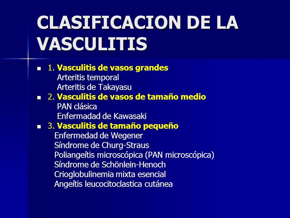 CLASIFICACION DE LA VASCULITIS 1. Vasculitis de vasos grandes Arteritis temporal Arteritis de Takayasu 2. Vasculitis de vasos de tamaño medio PAN clás