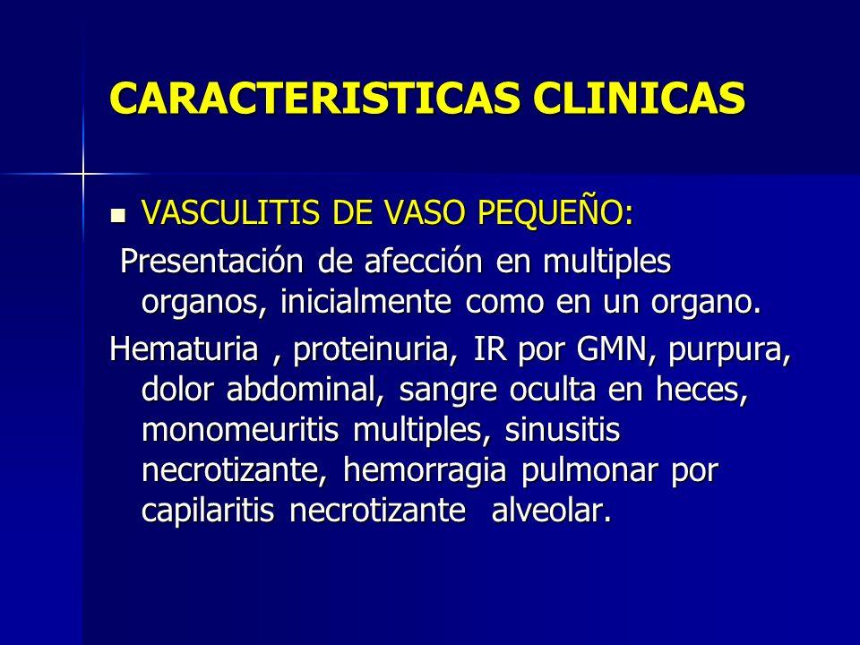 CARACTERISTICAS CLINICAS VASCULITIS DE VASO PEQUEÑO: VASCULITIS DE VASO PEQUEÑO: Presentación de afección en multiples organos, inicialmente como en u