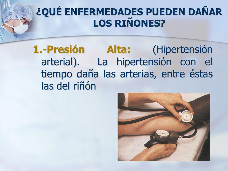 ¿QUÉ ENFERMEDADES PUEDEN DAÑAR LOS RIÑONES? 1.-Presión Alta: (Hipertensión arterial). La hipertensión con el tiempo daña las arterias, entre éstas las