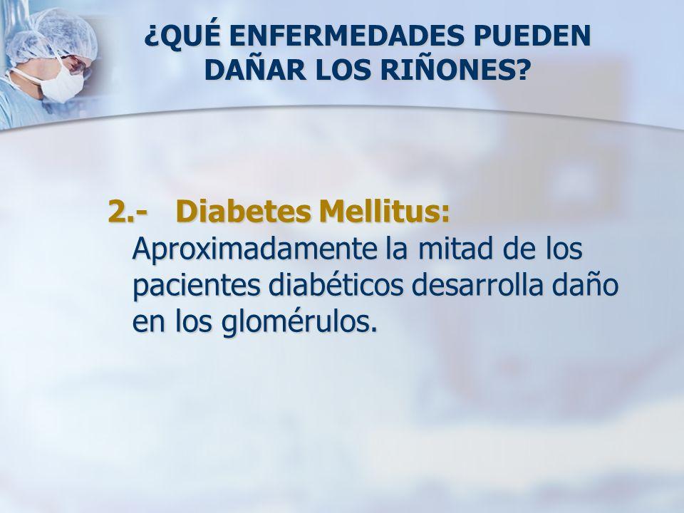 ¿QUÉ ENFERMEDADES PUEDEN DAÑAR LOS RIÑONES? 2.- Diabetes Mellitus: Aproximadamente la mitad de los pacientes diabéticos desarrolla daño en los gloméru