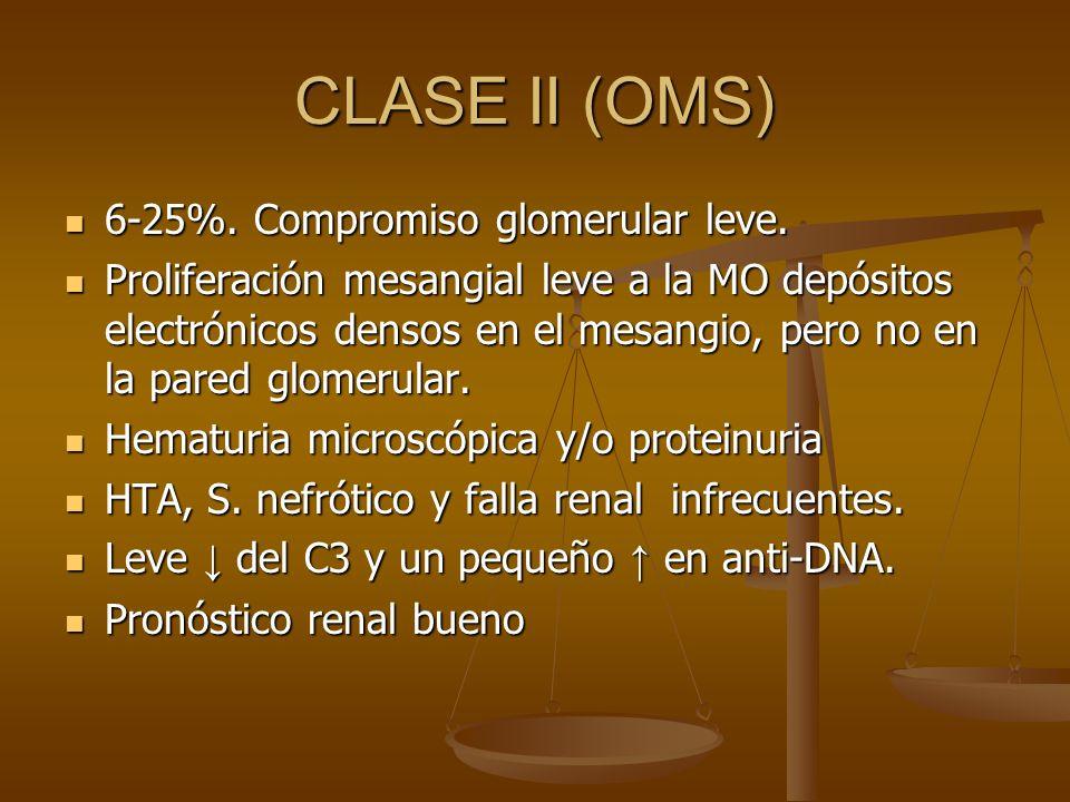 CLASE II (OMS) 6-25%. Compromiso glomerular leve. 6-25%. Compromiso glomerular leve. Proliferación mesangial leve a la MO depósitos electrónicos denso