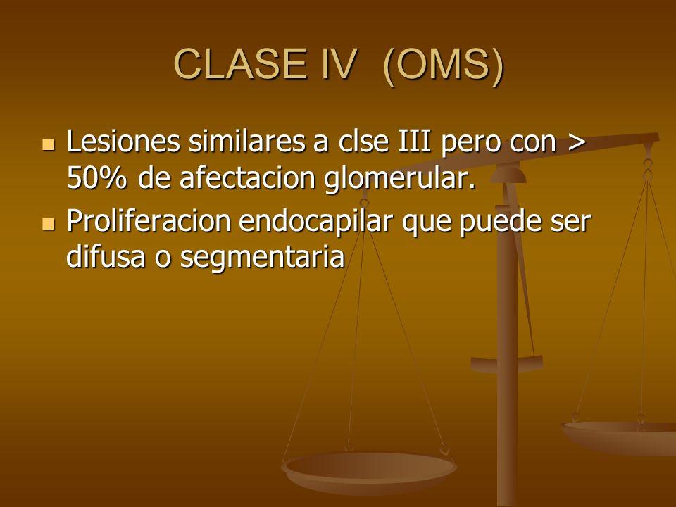 CLASE IV (OMS) Lesiones similares a clse III pero con > 50% de afectacion glomerular. Lesiones similares a clse III pero con > 50% de afectacion glome