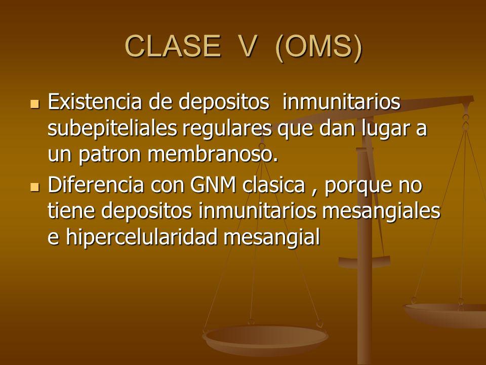 CLASE V (OMS) Existencia de depositos inmunitarios subepiteliales regulares que dan lugar a un patron membranoso. Existencia de depositos inmunitarios