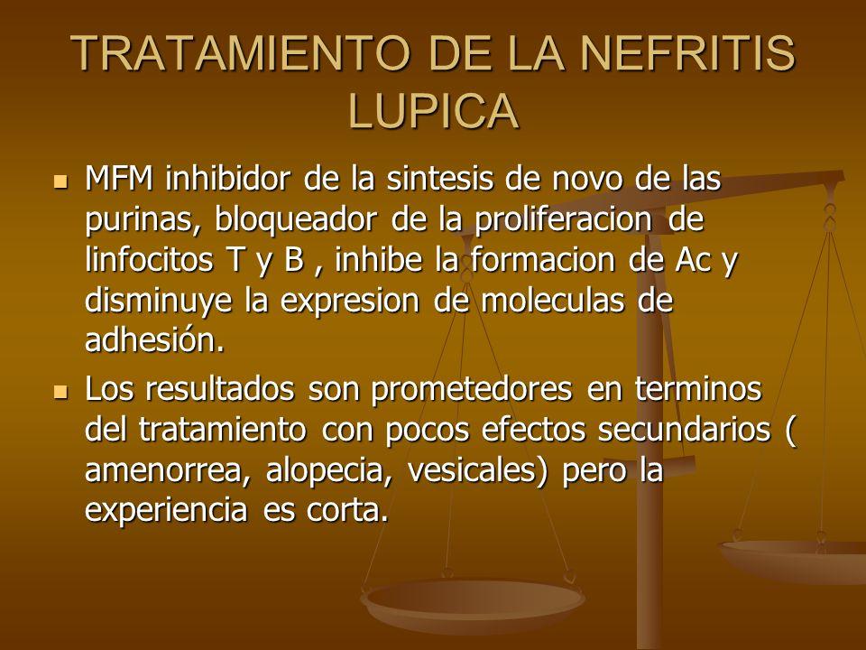 TRATAMIENTO DE LA NEFRITIS LUPICA MFM inhibidor de la sintesis de novo de las purinas, bloqueador de la proliferacion de linfocitos T y B, inhibe la f