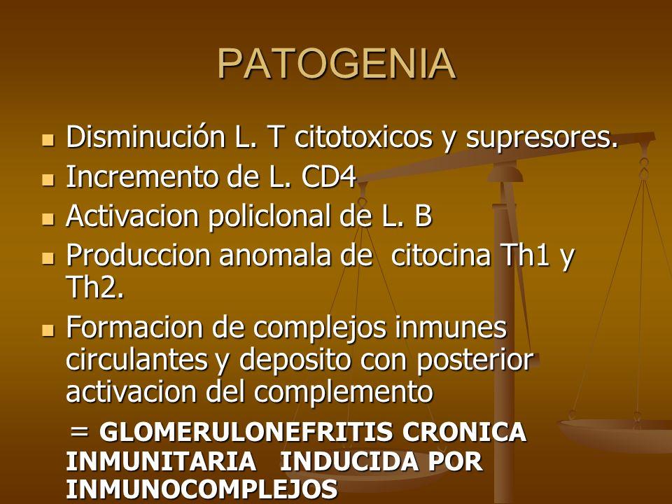 PATOGENIA Disminución L. T citotoxicos y supresores. Disminución L. T citotoxicos y supresores. Incremento de L. CD4 Incremento de L. CD4 Activacion p