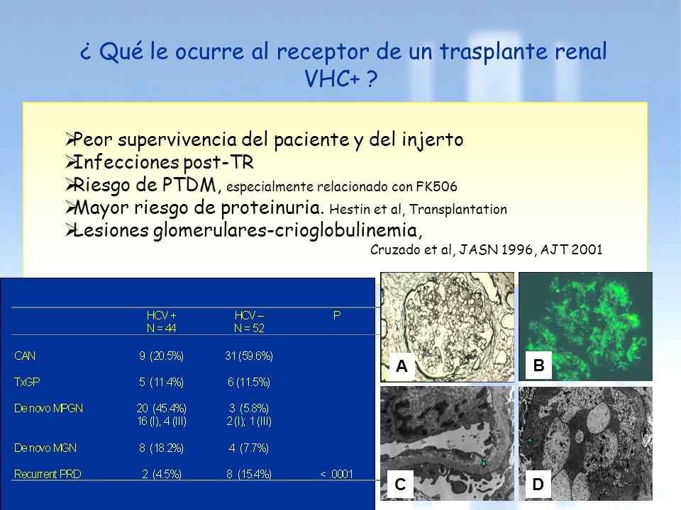 ¿ Qué le ocurre al receptor de un trasplante renal VHC+ ? Peor supervivencia del paciente y del injerto Infecciones post-TR Riesgo de PTDM, especialme