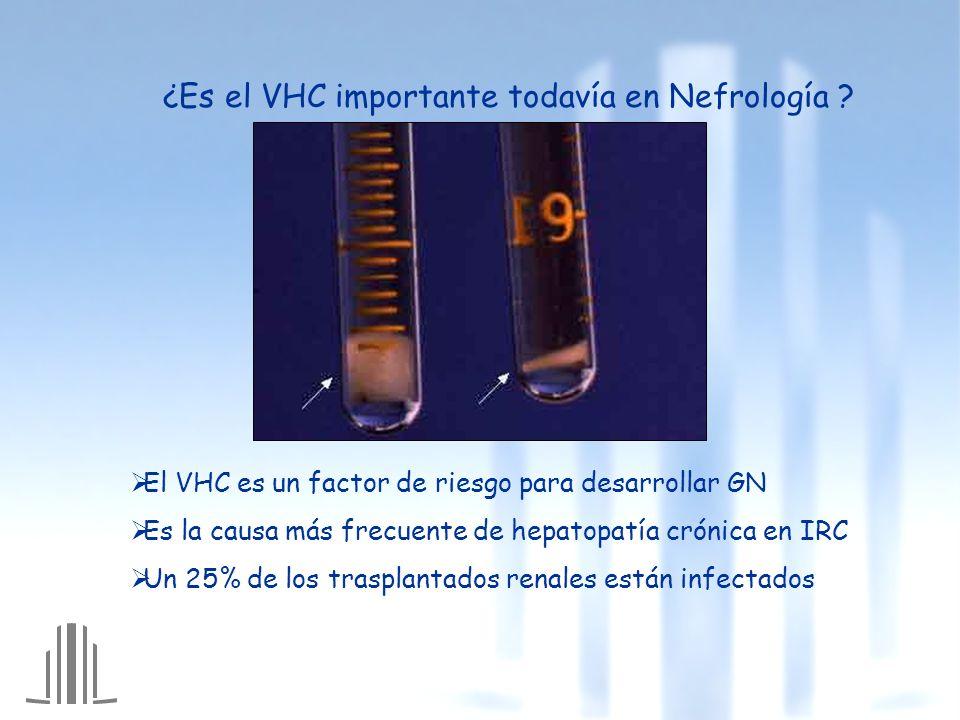 ¿Es el VHC importante todavía en Nefrología ? El VHC es un factor de riesgo para desarrollar GN Es la causa más frecuente de hepatopatía crónica en IR