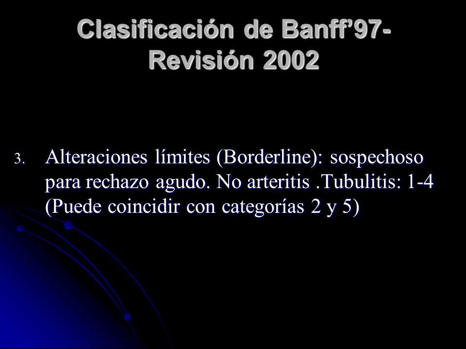Clasificación de Banff97- Revisión 2002 3. Alteraciones límites (Borderline): sospechoso para rechazo agudo. No arteritis.Tubulitis: 1-4 (Puede coinci