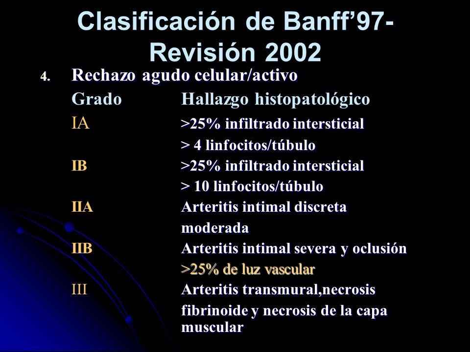 Clasificación de Banff97- Revisión 2002 4. Rechazo agudo celular/activo GradoHallazgo histopatológico >25% infiltrado intersticial IA >25% infiltrado