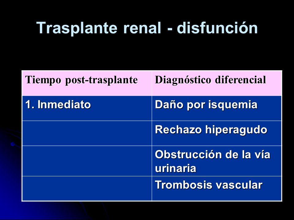 Trasplante renal - disfunción Tiempo post-trasplante Diagnóstico diferencial 1. Inmediato Daño por isquemia Rechazo hiperagudo Obstrucción de la vía u