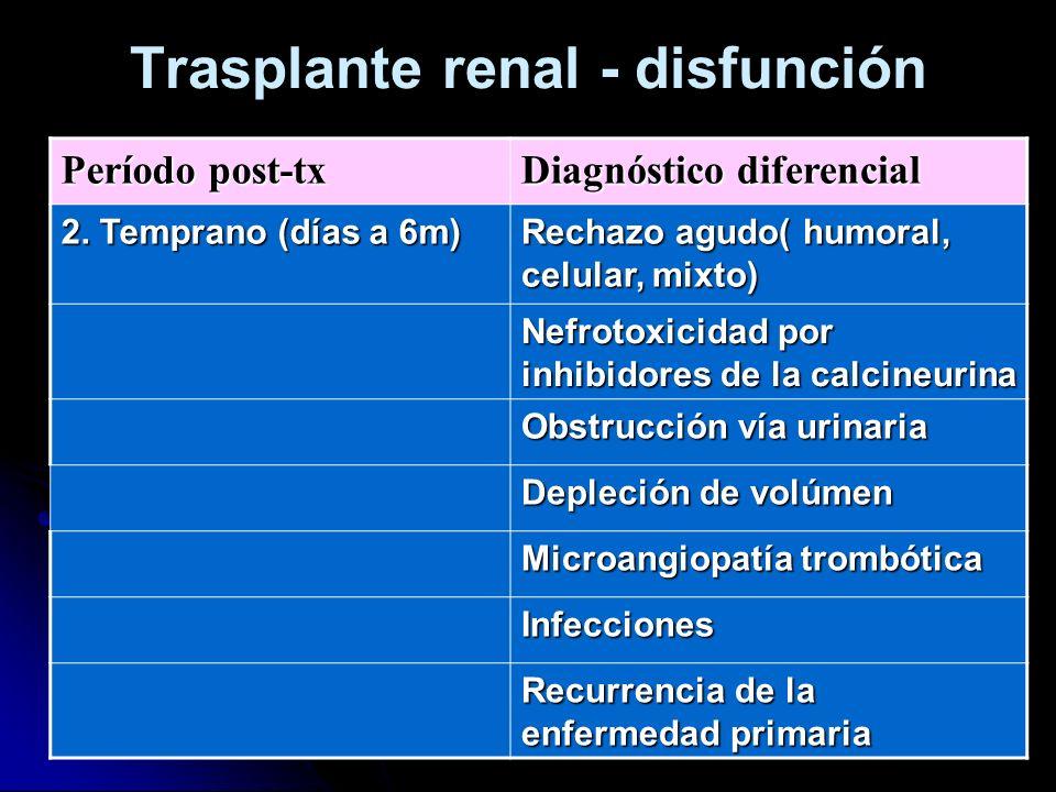 Trasplante renal - disfunción Período post-tx Diagnóstico diferencial 2. Temprano (días a 6m) Rechazo agudo( humoral, celular, mixto) Nefrotoxicidad p