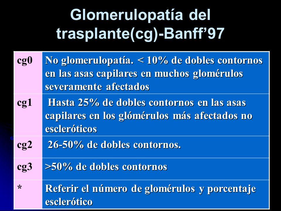 Glomerulopatía del trasplante(cg)-Banff97 cg0 No glomerulopatía. < 10% de dobles contornos en las asas capilares en muchos glomérulos severamente afec
