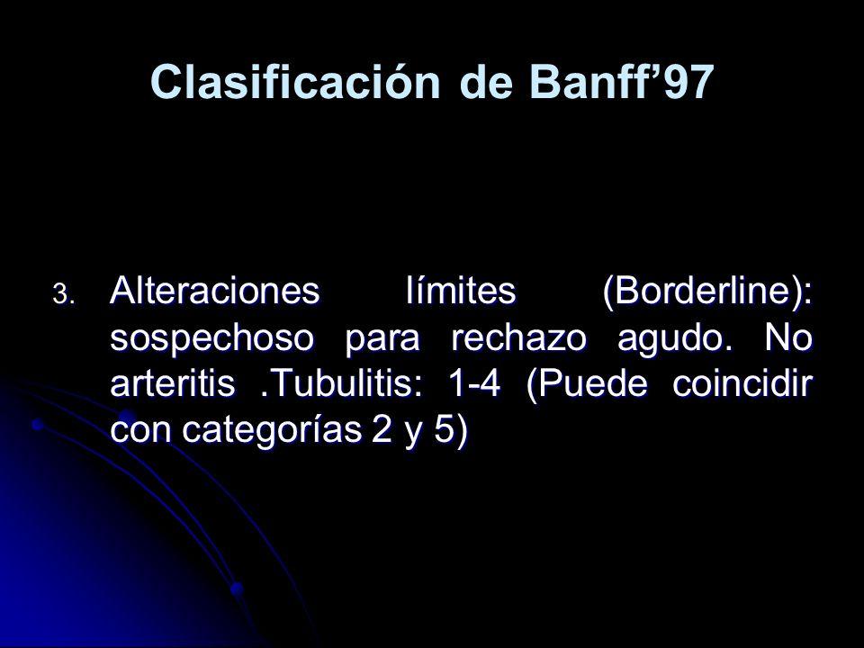 Clasificación de Banff97 3. Alteraciones límites (Borderline): sospechoso para rechazo agudo. No arteritis.Tubulitis: 1-4 (Puede coincidir con categor