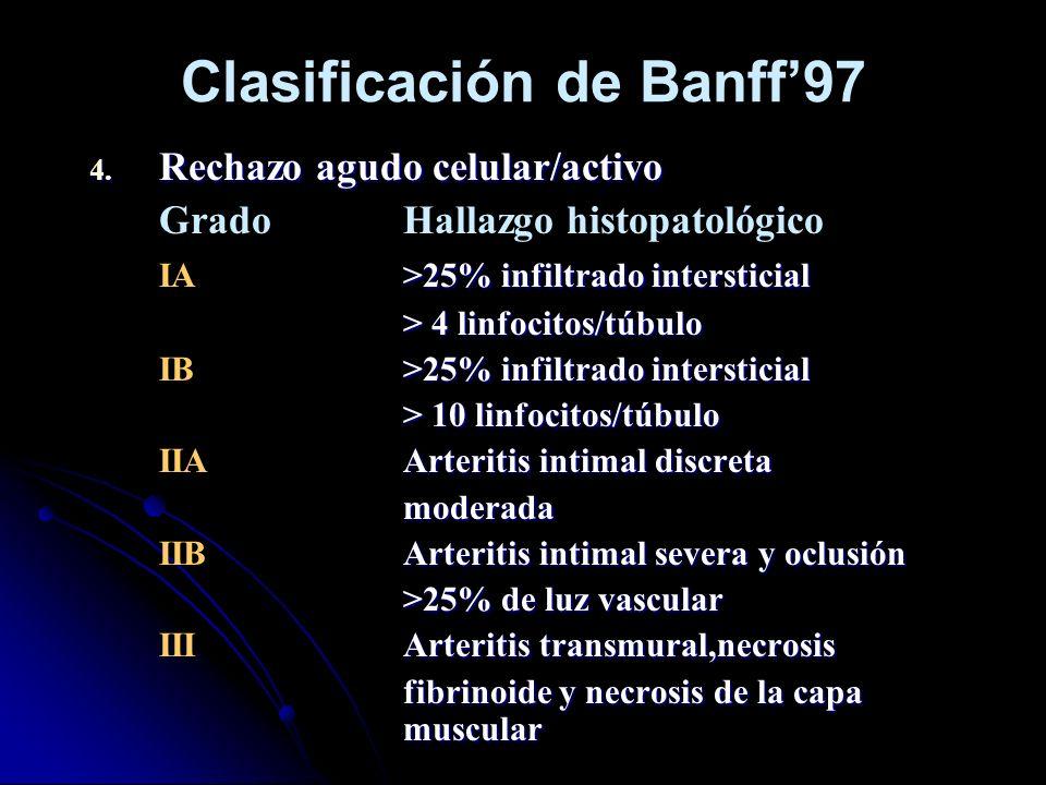 Clasificación de Banff97 4. Rechazo agudo celular/activo GradoHallazgo histopatológico >25% infiltrado intersticial IA>25% infiltrado intersticial > 4