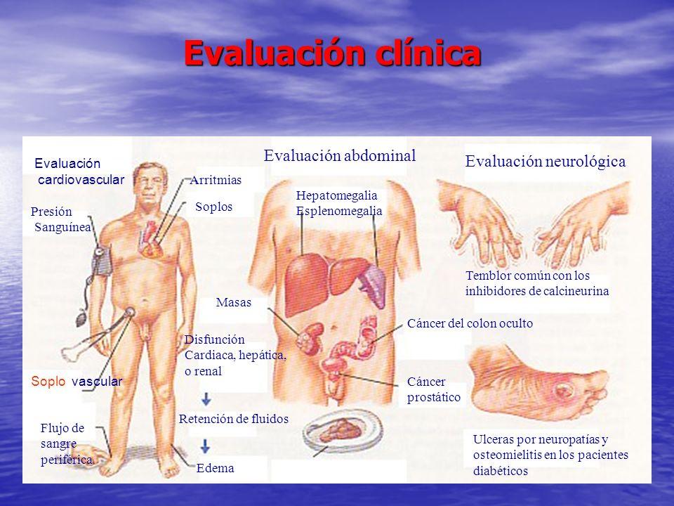Evaluación clínica Evaluación abdominal Hepatomegalia Esplenomegalia Arritmias Soplos Presión Sanguínea Soplo vascular Flujo de sangre periférica Masa