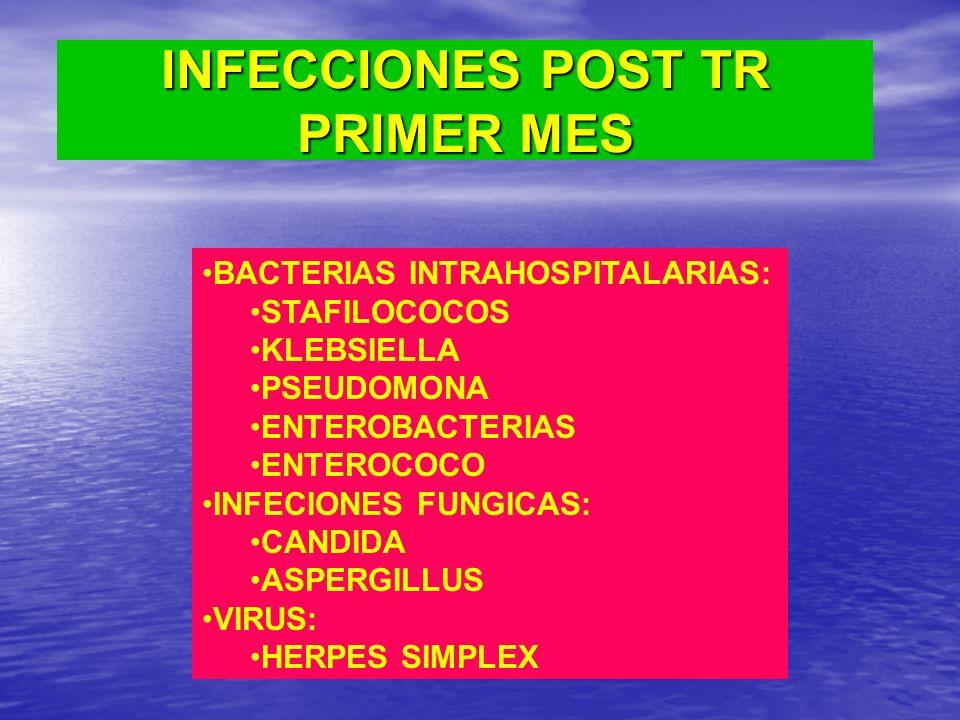 INFECCIONES POST TR PRIMER MES BACTERIAS INTRAHOSPITALARIAS: STAFILOCOCOS KLEBSIELLA PSEUDOMONA ENTEROBACTERIAS ENTEROCOCO INFECIONES FUNGICAS: CANDID
