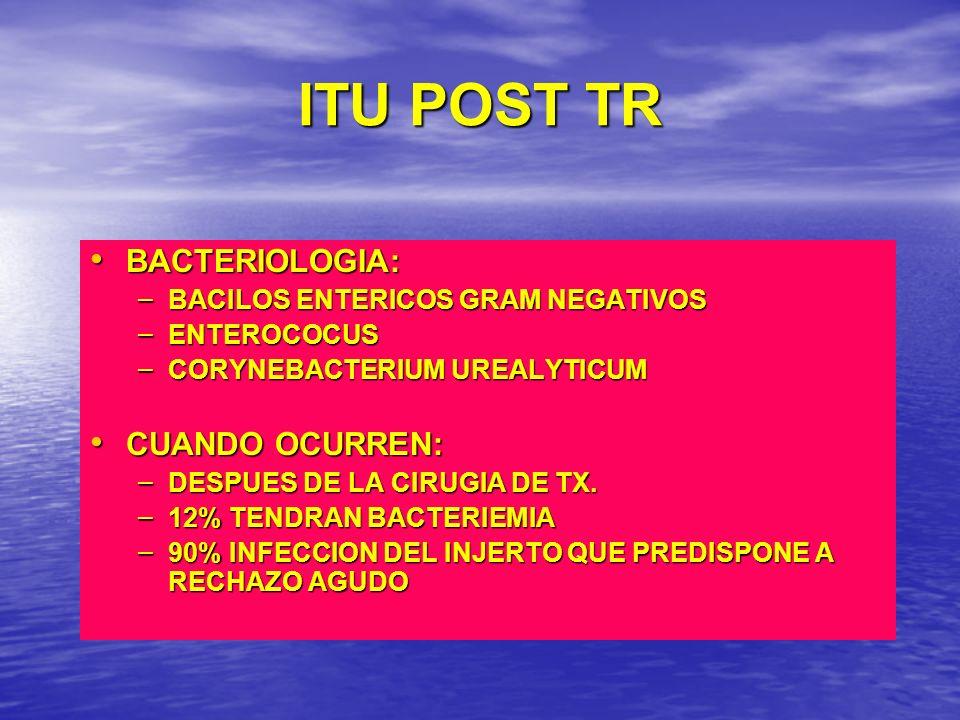 ITU POST TR BACTERIOLOGIA: BACTERIOLOGIA: – BACILOS ENTERICOS GRAM NEGATIVOS – ENTEROCOCUS – CORYNEBACTERIUM UREALYTICUM CUANDO OCURREN: CUANDO OCURRE
