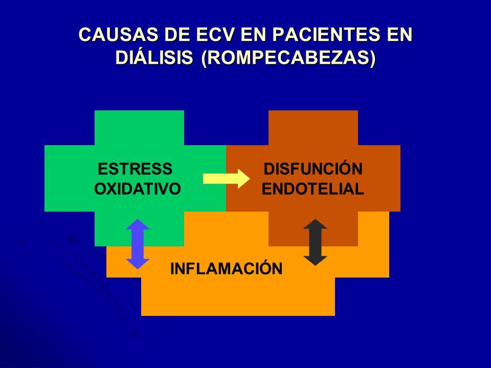 CAUSAS DE ECV EN PACIENTES EN DIÁLISIS (ROMPECABEZAS) INFLAMACIÓN ESTRESS OXIDATIVO DISFUNCIÓN ENDOTELIAL