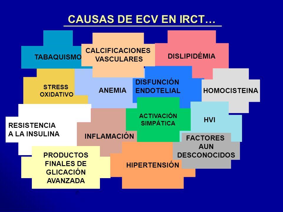 CAUSAS DE ECV EN IRCT… STRESS OXIDATIVO DISLIPIDÉMIA ANEMIA DISFUNCIÓN ENDOTELIAL RESISTENCIA A LA INSULINA INFLAMACIÓN HOMOCISTEINA PRODUCTOS FINALES