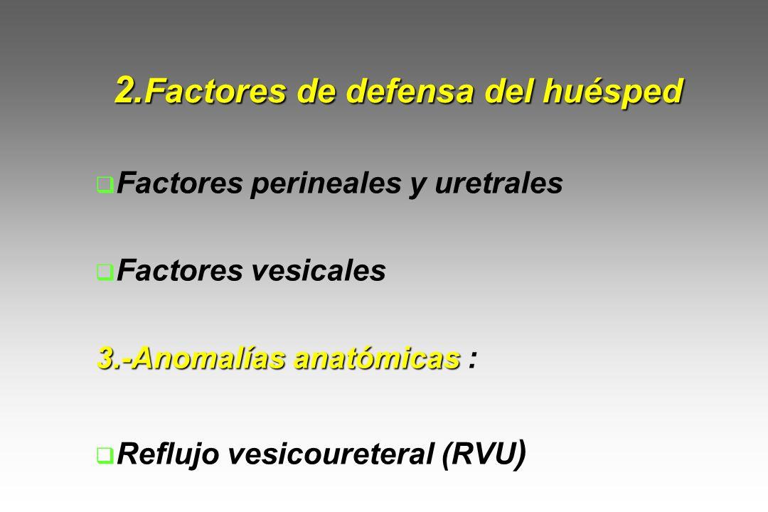2. Factores de defensa del huésped Factores perineales y uretrales Factores vesicales 3.-Anomalías anatómicas 3.-Anomalías anatómicas : Reflujo vesico