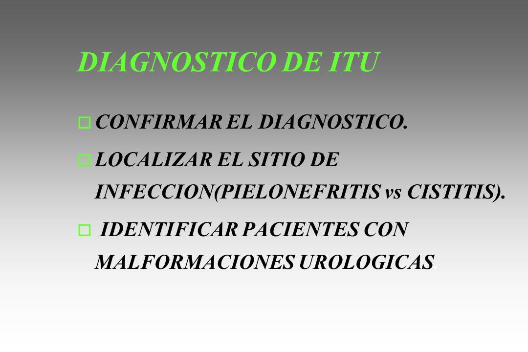 DIAGNOSTICO DE ITU o CONFIRMAR EL DIAGNOSTICO. o LOCALIZAR EL SITIO DE INFECCION(PIELONEFRITIS vs CISTITIS). o IDENTIFICAR PACIENTES CON MALFORMACIONE