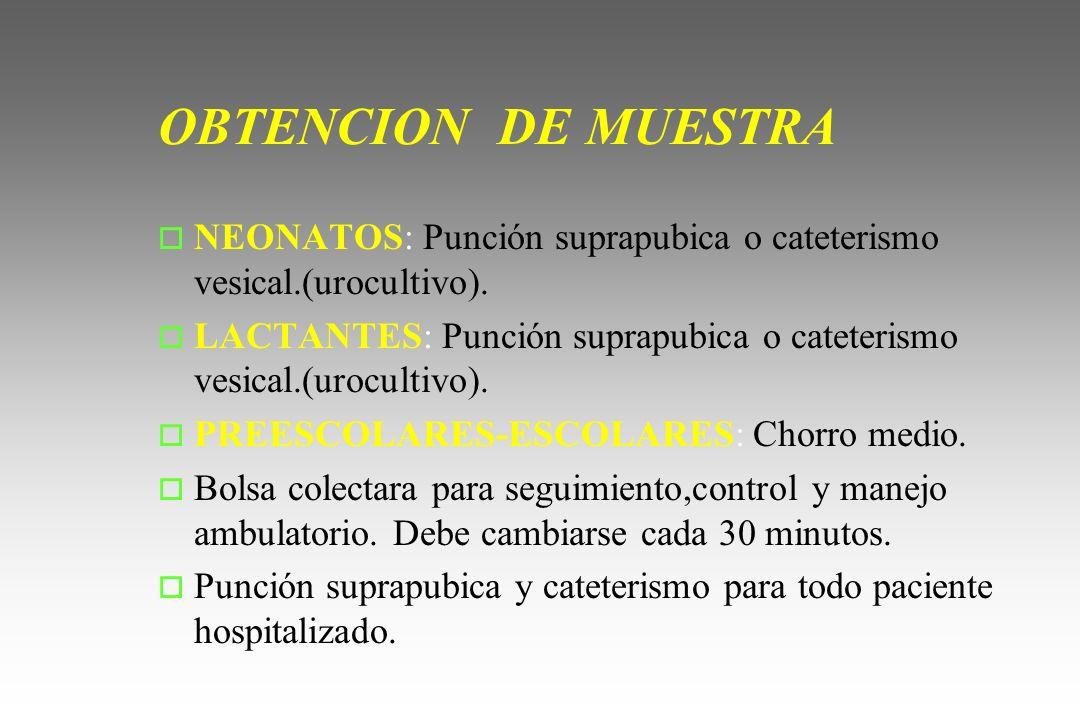 OBTENCION DE MUESTRA o NEONATOS: Punción suprapubica o cateterismo vesical.(urocultivo). o LACTANTES: Punción suprapubica o cateterismo vesical.(urocu