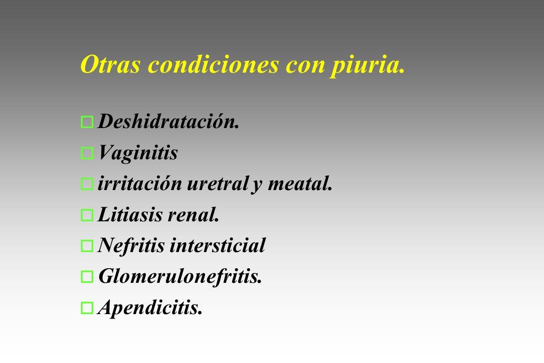 Otras condiciones con piuria. o Deshidratación. o Vaginitis o irritación uretral y meatal. o Litiasis renal. o Nefritis intersticial o Glomerulonefrit