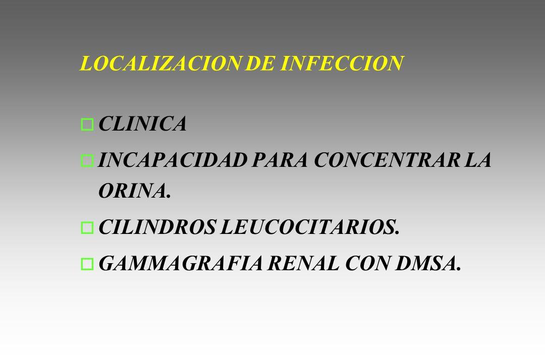 LOCALIZACION DE INFECCION o CLINICA o INCAPACIDAD PARA CONCENTRAR LA ORINA. o CILINDROS LEUCOCITARIOS. o GAMMAGRAFIA RENAL CON DMSA.