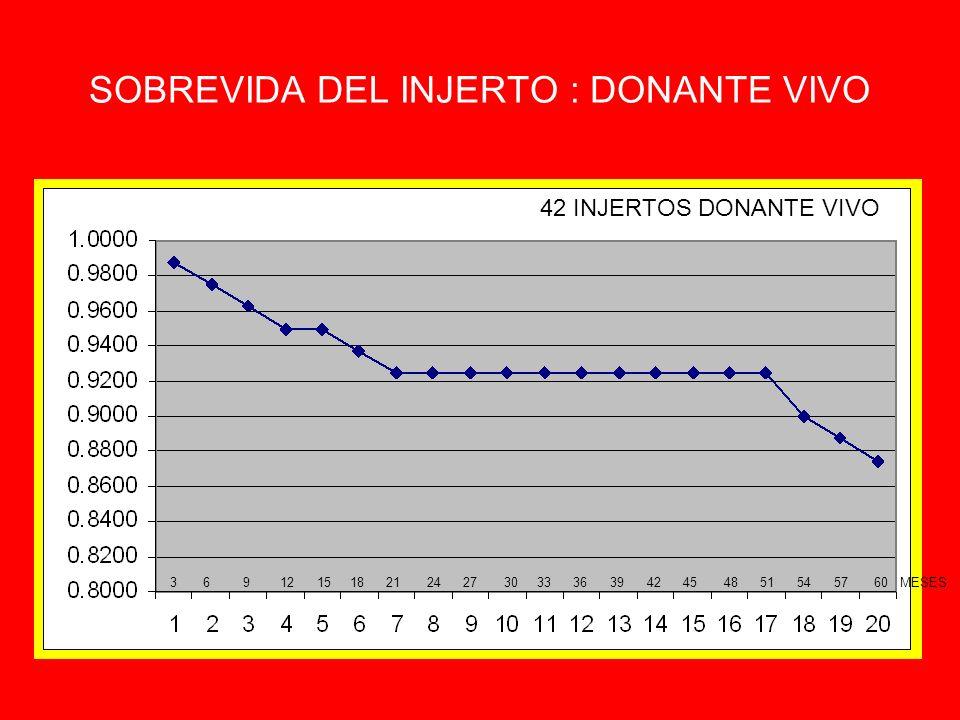 SOBREVIDA DEL INJERTO : DONANTE VIVO 3 6 9 12 15 18 21 24 27 30 33 36 39 42 45 48 51 54 57 60 MESES 42 INJERTOS DONANTE VIVO