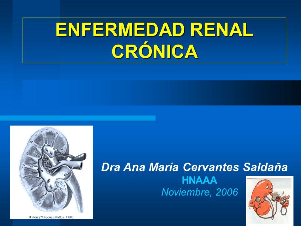 Dra Ana María Cervantes Saldaña HNAAA Noviembre, 2006 ENFERMEDAD RENAL CRÓNICA