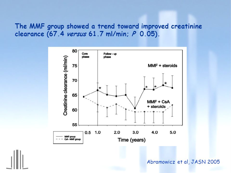 The MMF group showed a trend toward improved creatinine clearance (67.4 versus 61.7 ml/min; P 0.05).
