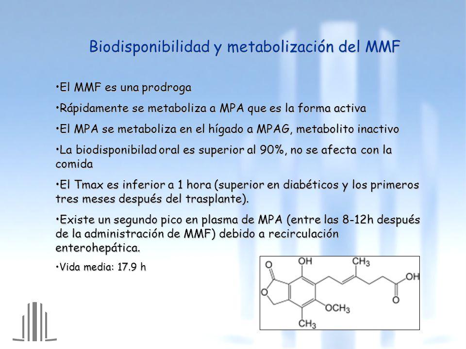 Biodisponibilidad y metabolización del MMF El MMF es una prodrogaEl MMF es una prodroga Rápidamente se metaboliza a MPA que es la forma activaRápidamente se metaboliza a MPA que es la forma activa El MPA se metaboliza en el hígado a MPAG, metabolito inactivoEl MPA se metaboliza en el hígado a MPAG, metabolito inactivo La biodisponibilad oral es superior al 90%, no se afecta con la comidaLa biodisponibilad oral es superior al 90%, no se afecta con la comida El Tmax es inferior a 1 hora (superior en diabéticos y los primeros tres meses después del trasplante).El Tmax es inferior a 1 hora (superior en diabéticos y los primeros tres meses después del trasplante).