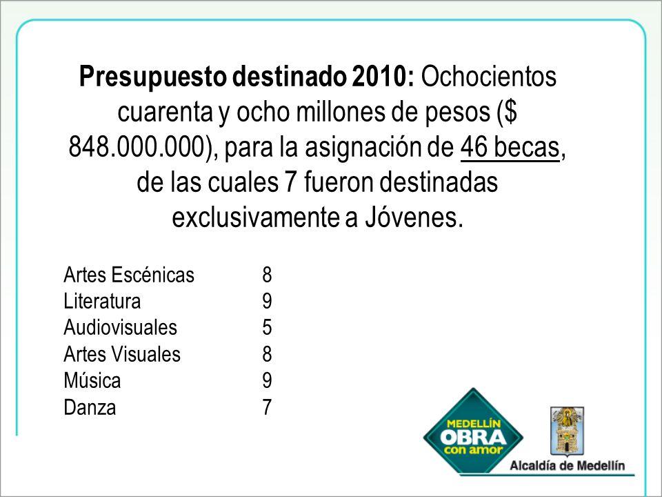 Presupuesto destinado 2010: Ochocientos cuarenta y ocho millones de pesos ($ 848.000.000), para la asignación de 46 becas, de las cuales 7 fueron destinadas exclusivamente a Jóvenes.