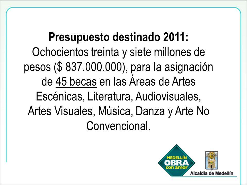 Presupuesto destinado 2011: Ochocientos treinta y siete millones de pesos ($ 837.000.000), para la asignación de 45 becas en las Áreas de Artes Escénicas, Literatura, Audiovisuales, Artes Visuales, Música, Danza y Arte No Convencional.