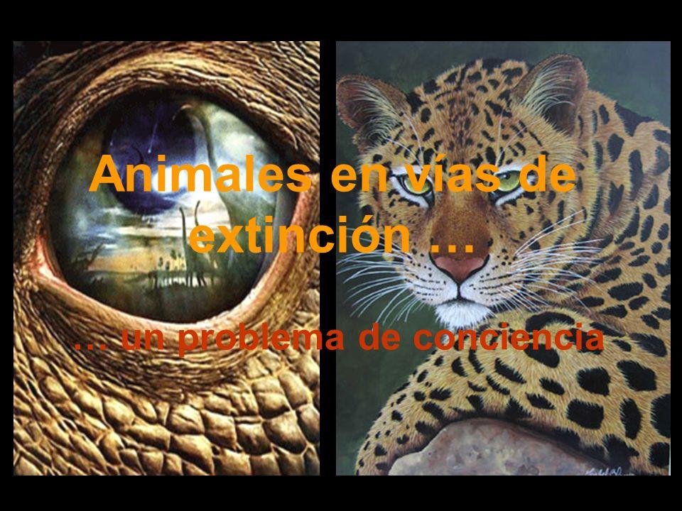 Animales en vías de extinción … … un problema de conciencia