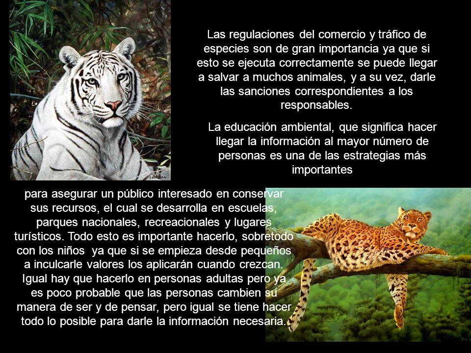 Las regulaciones del comercio y tráfico de especies son de gran importancia ya que si esto se ejecuta correctamente se puede llegar a salvar a muchos