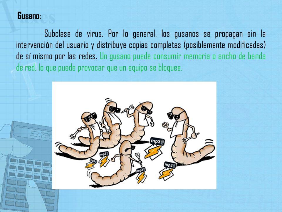Subclase de virus. Por lo general, los gusanos se propagan sin la intervención del usuario y distribuye copias completas (posiblemente modificadas) de