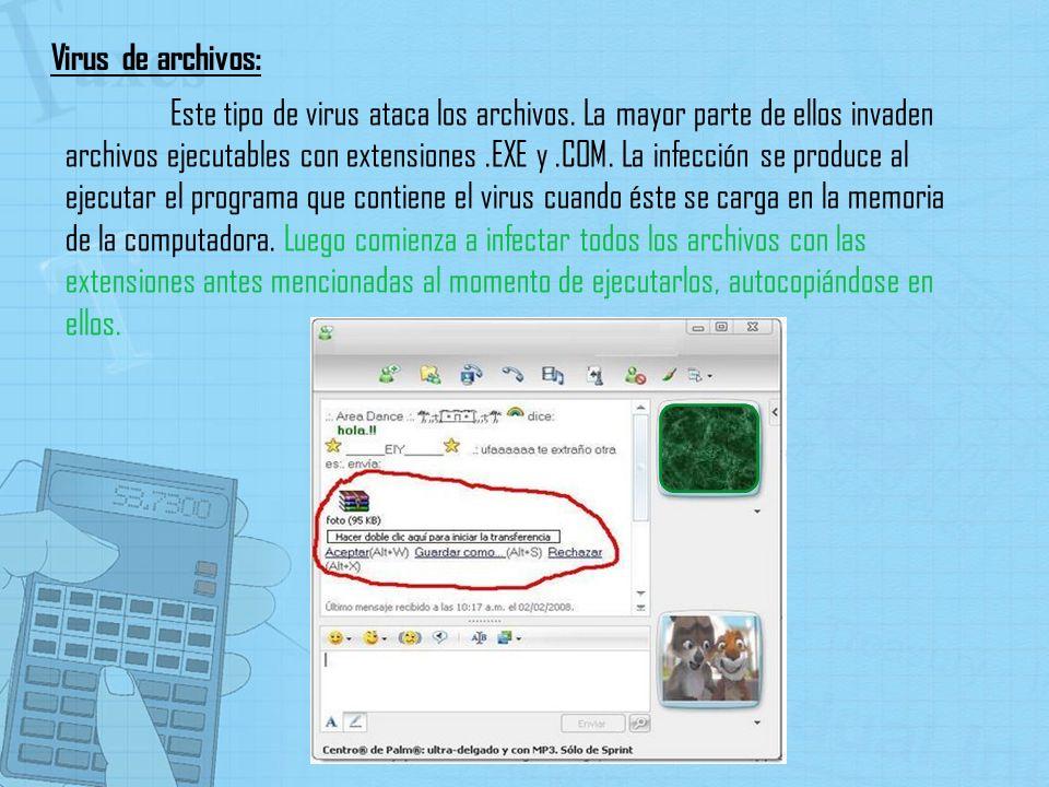 Este tipo de virus ataca los archivos. La mayor parte de ellos invaden archivos ejecutables con extensiones.EXE y.COM. La infección se produce al ejec