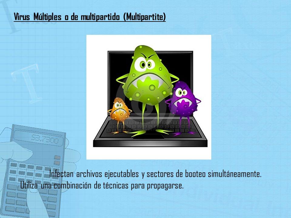 Infectan archivos ejecutables y sectores de booteo simultáneamente. Utiliza una combinación de técnicas para propagarse. Virus Múltiples o de multipar