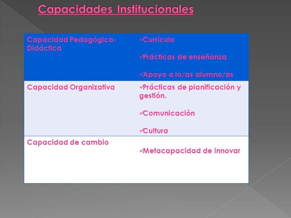 Capacidad Pedagógica- Didáctica Currículo Prácticas de enseñanza Apoyo a lo/as alumno/as Capacidad Organizativa Prácticas de planificación y gestión.